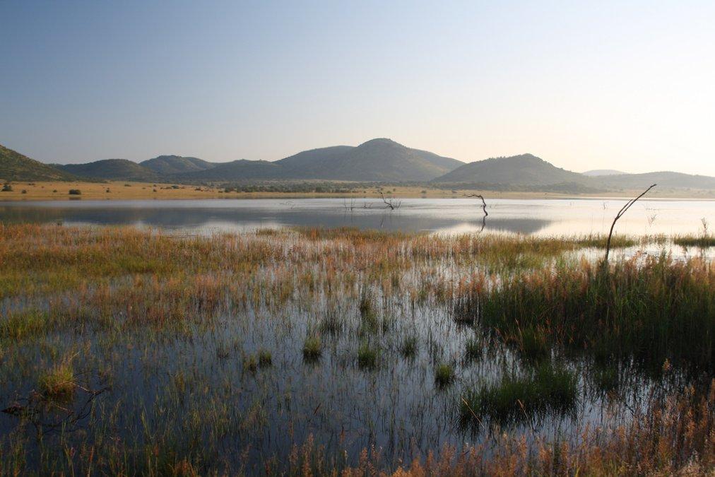 Amanece en Pilanesberg