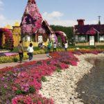 Dubai Miracla Garden