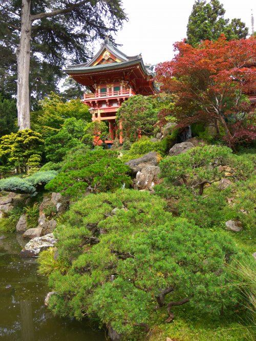 Jardin Japonés SF